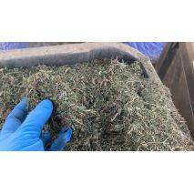 BaOx - Dried Biomass - Price per 1 lbs. - 11,000 lbs. total, image 2